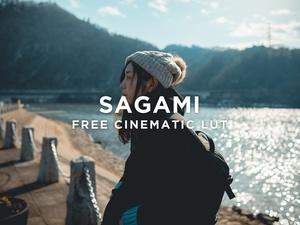FREE SAGAMI LUT