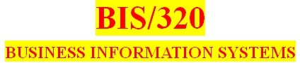 BIS 320 Week 2 IT Planning and Database Presentation