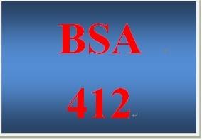 BSA 412 Week 3 Individual Data Flow Diagram
