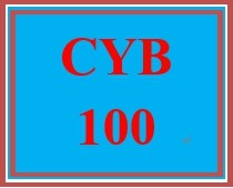 CYB 100 Week 1 Discussion Question: Key Components of an Information System as Related to the Cyber