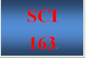 SCI 163 Week 4 Infectious Disease Blog Post