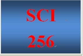 SCI 256 Week 5 Environmental Analysis Presentation