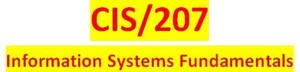 CIS 207 Week 1 Individual Effect of Systems on Business