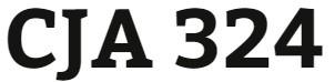 CJA 324 Week 3 Ethics Issue Presentation