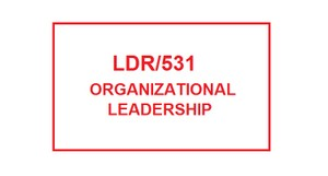 LDR 531 Week 1 DISC Assessment
