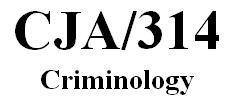 CJA 314 Week 3 Individual Paper - Examining Theory Paper