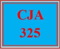 CJA 325 Week 2 Organized Crime Group Analysis