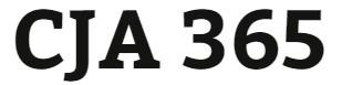 CJA 365 Week 3 Capital Funding and Debt Paper