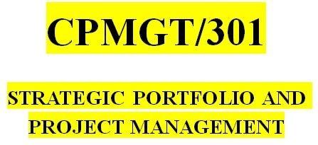 CPMGT 301 Week 2 Portfolio Management and Strategic Management Paper