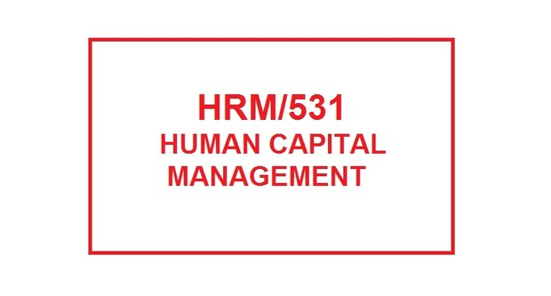 HRM 531 Week 2 Knowledge Check