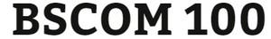 BSCOM 100 Week 2 Interview Activity