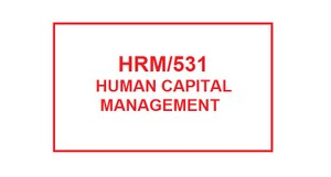 HRM 531 Entire Course