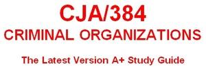 CJA 384 Team Charter