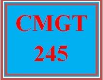 CMGT 245 All participations
