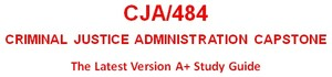 CJA484 Week 4 Courtroom Standards Analysis