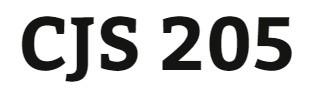 CJS 205 Week 2 Interview Approaches & Strategies Presentation