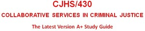 CJHS430 Week 3 Protective Order