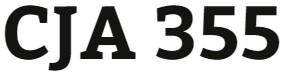 CJA 355 Week 2 Learning Team: Problem Solving Evaluation Presentation