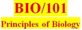 BIO 101 Week 1 Cell Biology