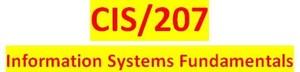 CIS 207 Week 2 Individual Information Use Paper