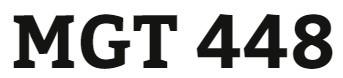MGT 448 Week 5 Final Global Business Plan