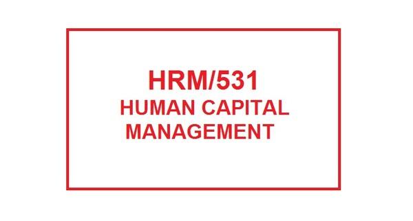 HRM 531 Week 6 Knowledge Check
