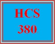 HCS 380 Week 4 Financial Statement