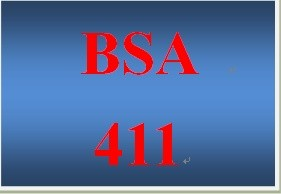 BSA 411Week 5 Learning Team Approach to Methodology