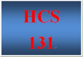 HCS 131 Week 3 HR Memo