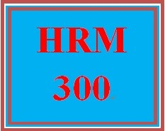 HRM 300 Week 1 Human Resource Management Overview