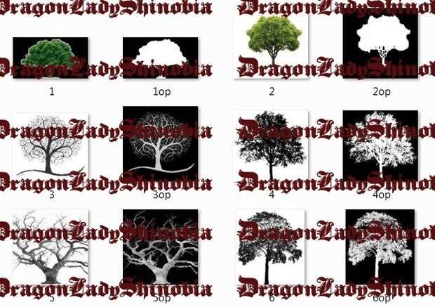 Trees + opacity
