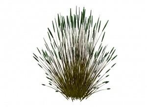 Reed mesh