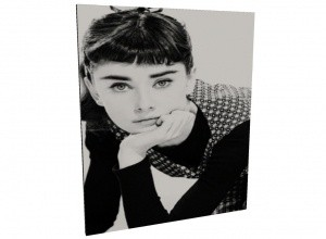 Audrey frameless picture mesh