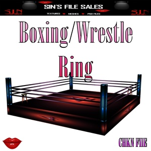 Boxing/Wrestling Ring *Mesh