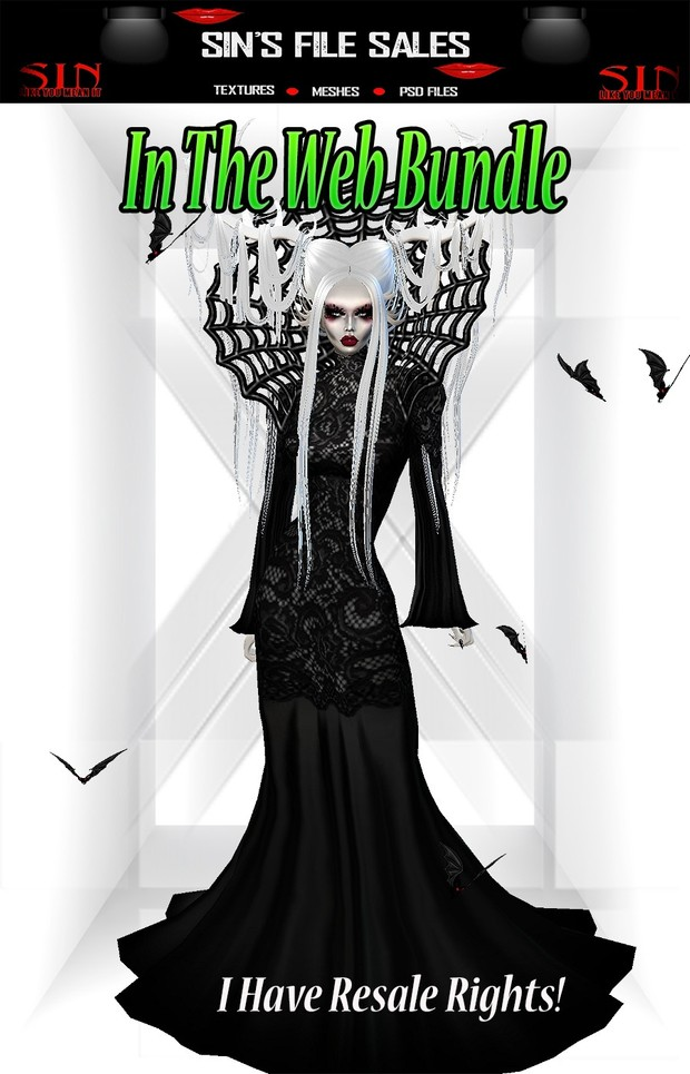In The Web * Halloween Costume plus Accessories*