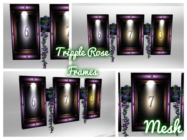 Tripple Rose Frame