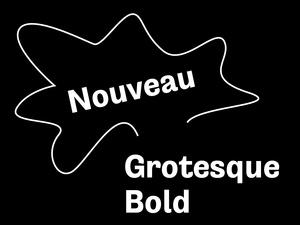 Nouveau Grotesque Bold Desktop 1-3 User
