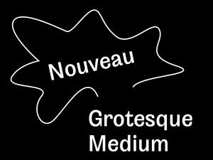 Nouveau Grotesque Medium Desktop 1-3 User
