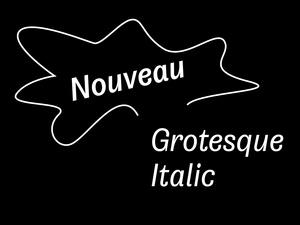 Nouveau Grotesque Italic Desktop 1-3 User