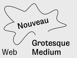 Nouveau Grotesque Medium Web 10.000 Pageviews
