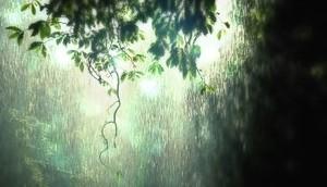 Natural Rain