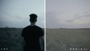 VIDEO |Blackstar Color Grading/ Lut