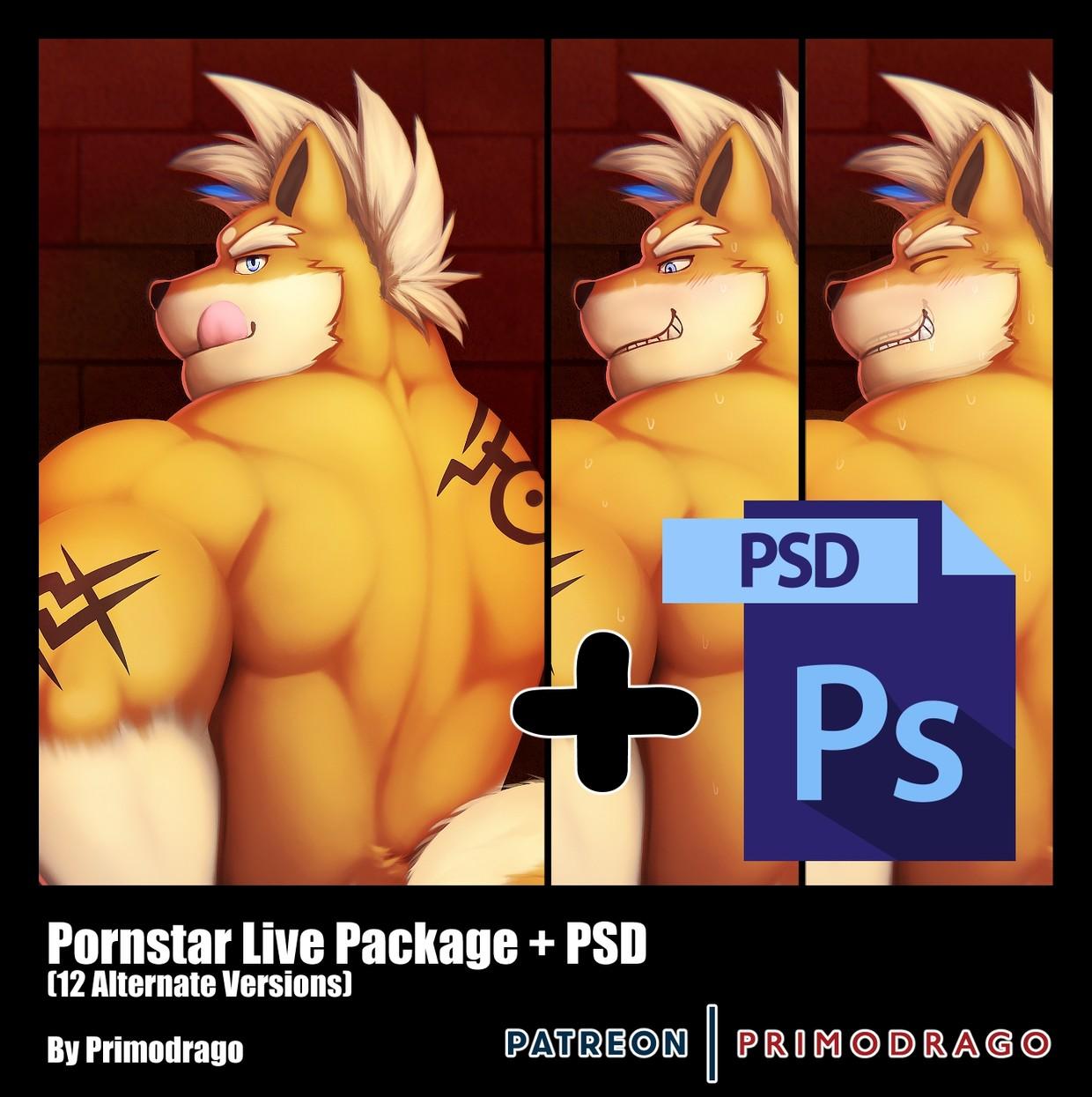 Pornstar Live Theme + PSD File