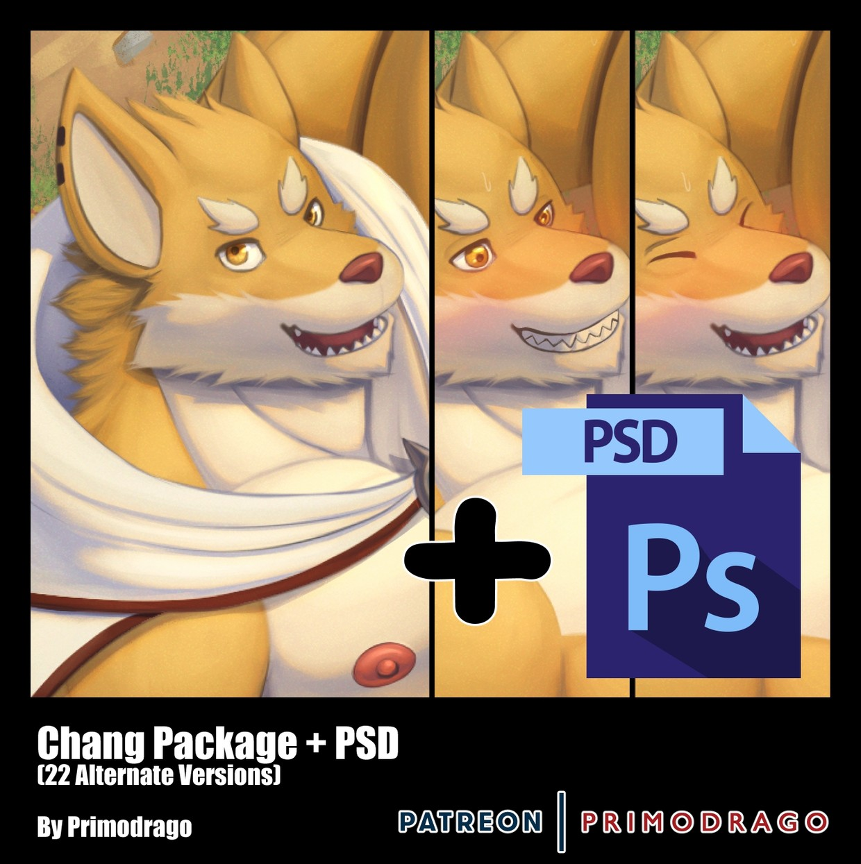 Chang Artpack + PSD File