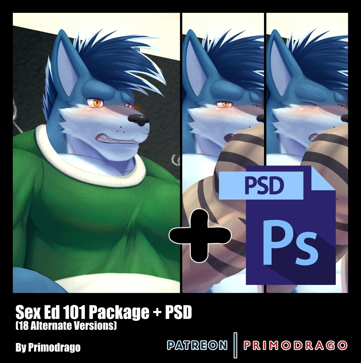 Sex Ed 101 Theme + PSD File
