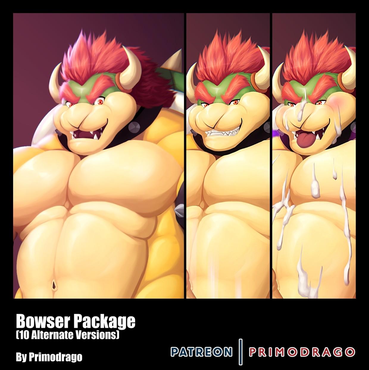 Bowser Artpack