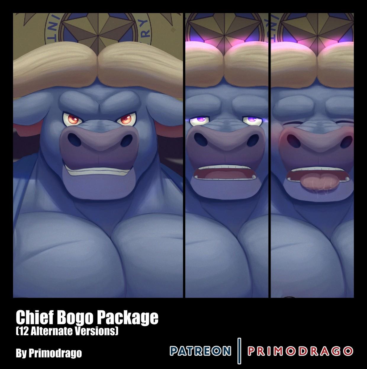 Chief Bogo Artpack