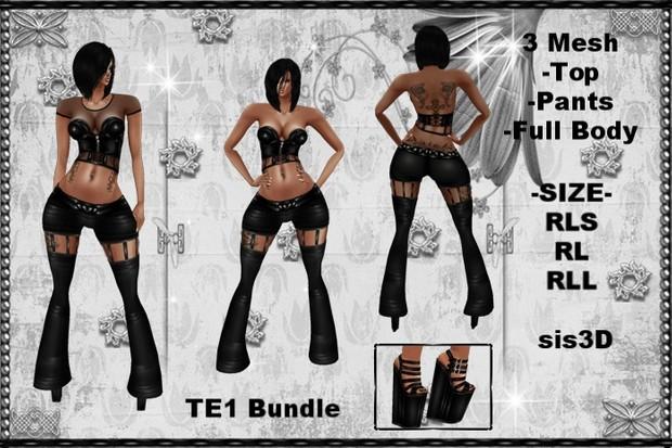 TE1 Bundle