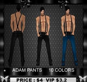 ADAM Pants
