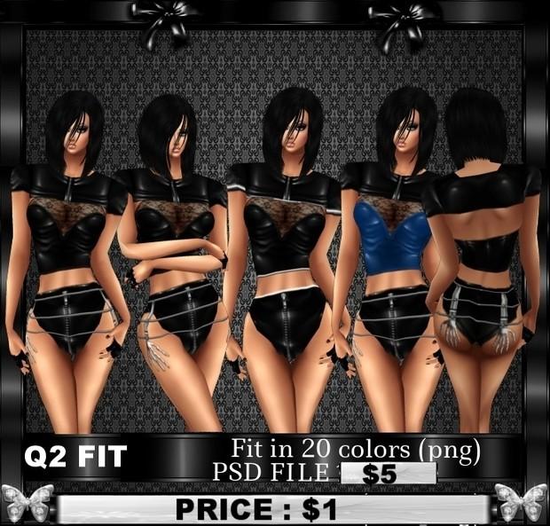 Q2 FIT